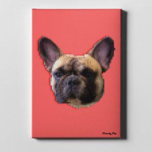 Pixel Art - Frenchy Pop